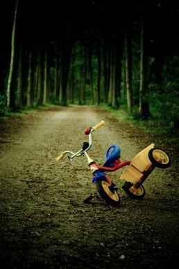 Eenzame driewieler in bos -Creative own Work - Diana van Neck - Fotograaf Zutphen