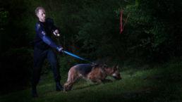 Politiehond - Creative own Work - Diana van Neck - Fotograaf Zutphen